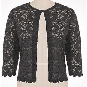 Plus Size Dress Barn Scalloped Lace Shrug